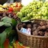 Consulenza in agricoltura: le novità della proposta per la PAC post 2020