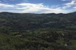 Il bosco ceduo nell'Appennino modenese